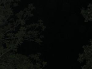 Blackened Sky at New Moon Photo by Open Portal Tarot