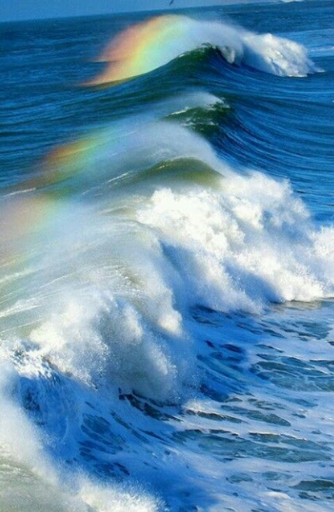 RAINBOW-SURF