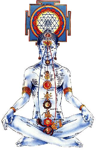 chakras yogi