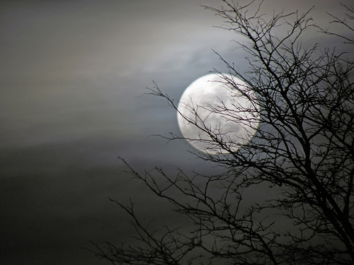 Full-Moon-on-Flickr