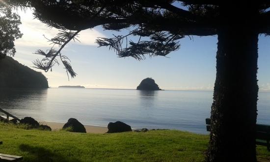 WAIWERA BEACH FROM WISE OWL EILEEN IN NEW ZEALAND