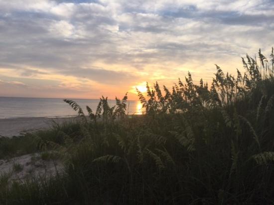 OCEAN VIEW BEACH, VIRGINIA. TAKEN BY WISE OWL ANNA.