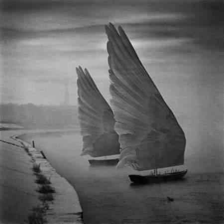 Dariusz Klimczak. Pisces Moon Tara Greene
