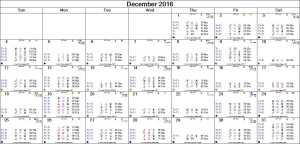 2016-12 Monthly Marsout