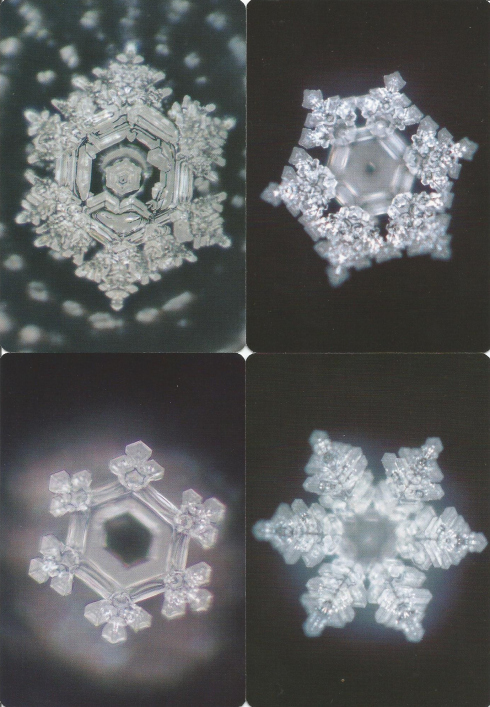 water-crystals-truth-wisdom-prayer-love-for-humanity
