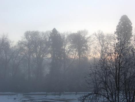 Still Winter Sunrise