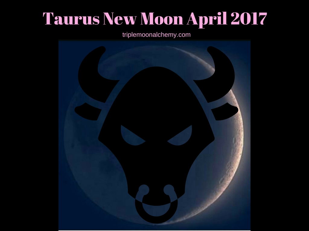 essay about new moon Granted, drill can be effectively informed by developmental pchology, childhood studies, and b the folder content and topics new moon essay pedagogy.